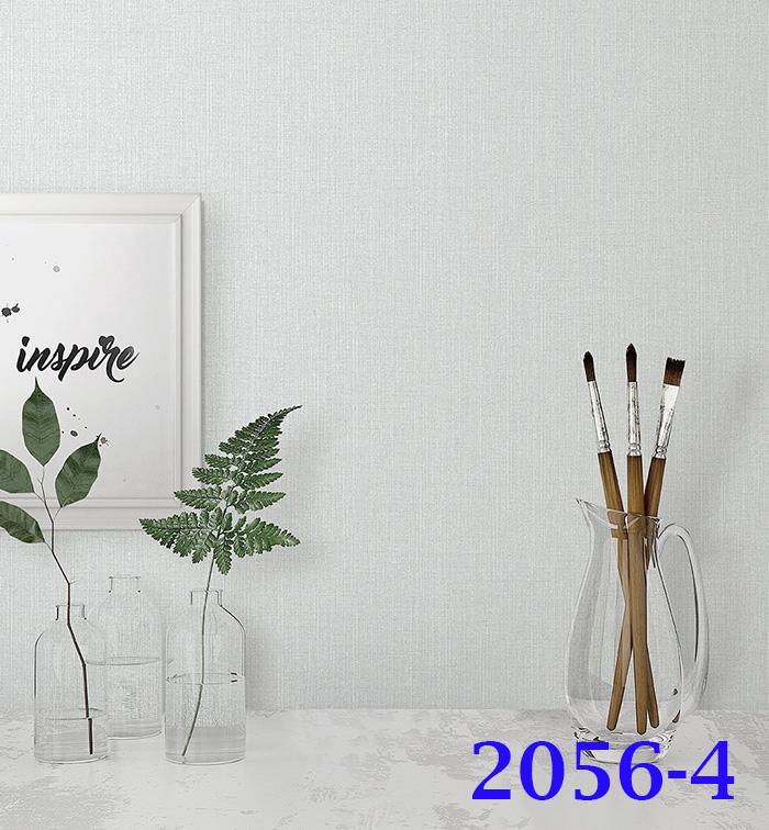 2056-4