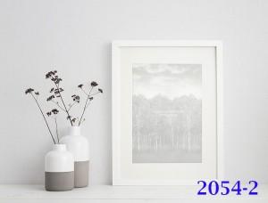 2054-2