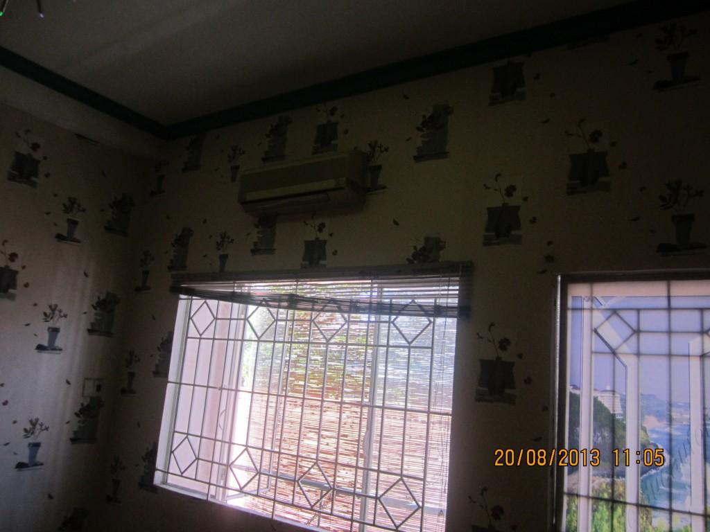 giấy dán tường tại trà sữa Hoa Hướng Dương