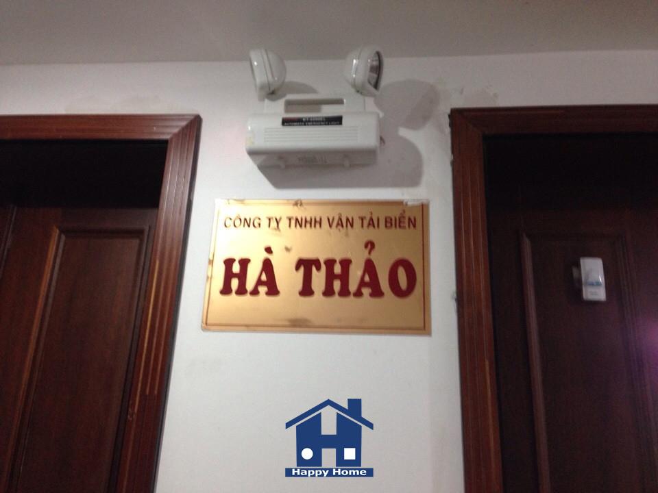 thi-cong-giay-dan-tuong-cho-cong-ty-ha-thao